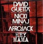 07.David Guetta