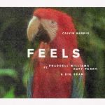 02.Calvin Harris_Feels_single art