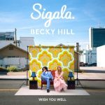 17a.Sigala & Becky Hill_Wish You Well_single cover